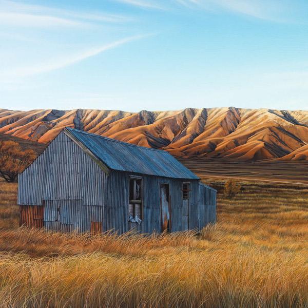 Parnell Gallery Auckland Artwork for sale Farmstead Hawkun Range Central Otago
