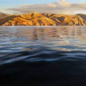 Steve Bellamy Landscape Artist Parnell Gallery New Zealand
