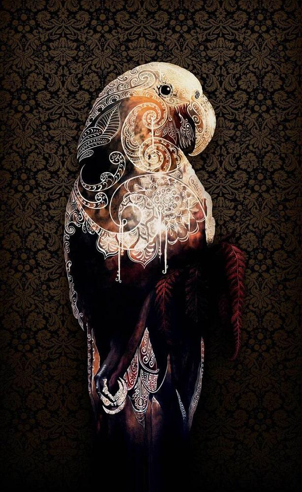 Sofia Minson The Heart of the Kaka limited edition art print for sale NZ Maori art