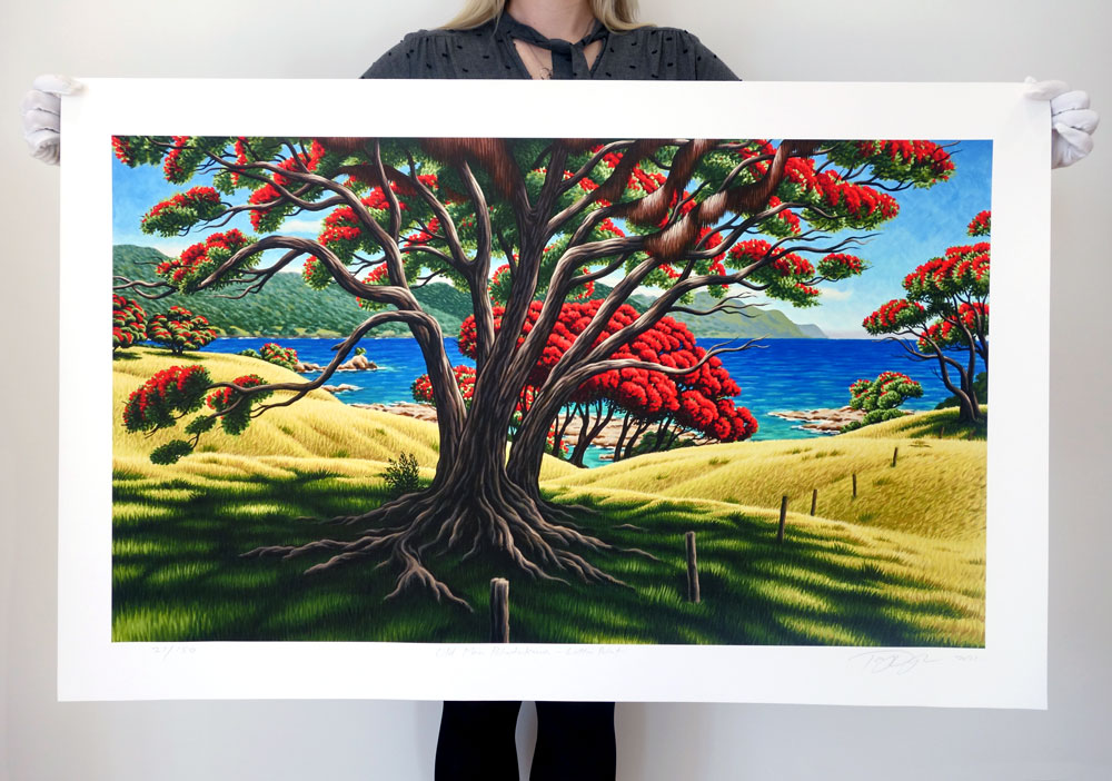 Tony Ogle, Limited Edition - Old Man Pohutukawa - Lottin Point - Giclee Print, Parnell Gallery Auckland NZ